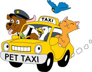pet-taksi-6