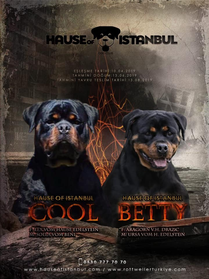 2019 EŞLEŞME – Cool Hause Of İstanbul X Betty Hause Of İstanbul